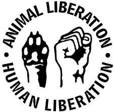 animalismo1