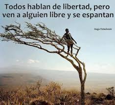 libertad4